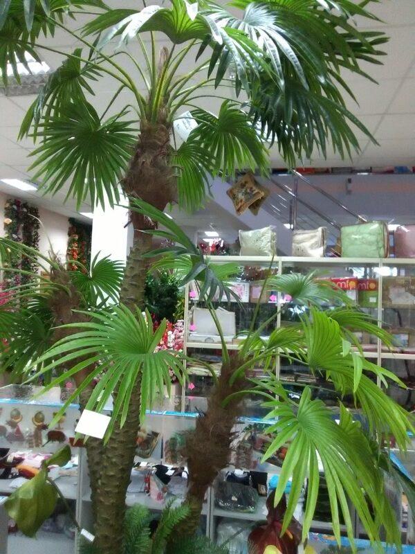 пальма 3м искусственное растение купить в Барнауле